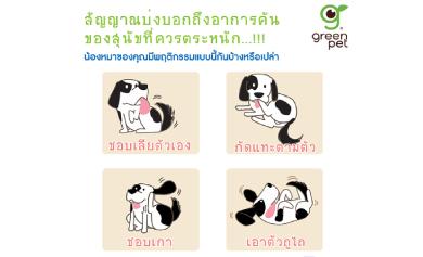สัญญาณบ่งบอกถึงอาการคันของสุนัขที่ควรตระหนักถึ