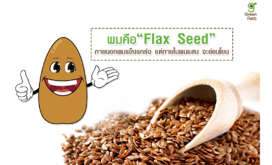 มาทำความรู้จัก Flax seed กันเถอะ