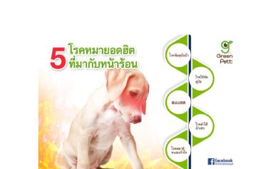 อันตราย! 5 โรคน้องหมา ยอดฮิตที่มากับหน้าร้อน